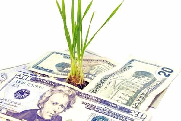 Kredyty bez bik Lewin Brzeski  zawnioskuj i wyślij sms o treści: WNIOSEK na 7393 (3.69 zł za sms)